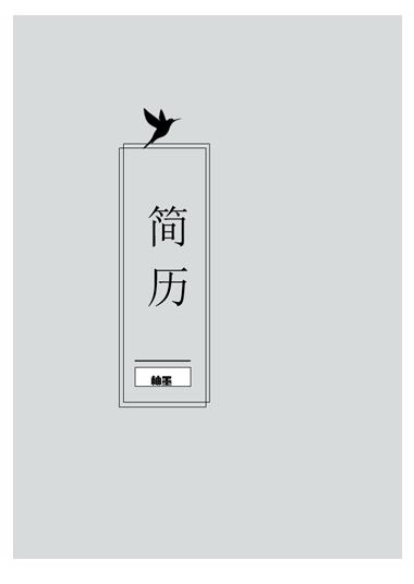 灰色飞鸟求职简历模板