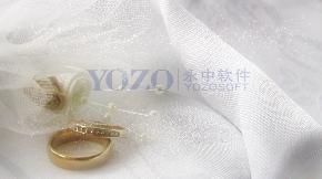 婚礼婚纱戒指片头