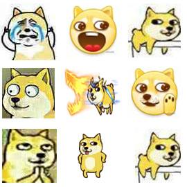 doge7